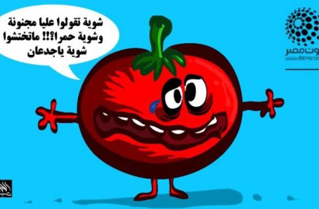 سج هل الطماطم خضار أم فاكهة منوعات