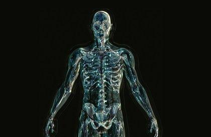 """أعضاء """"زائدة"""" في جسم الإنسان"""
