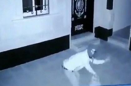 فيديو طريف لسارق يؤدي رقصة استعراضية قبل الخروج من الشقة - صحيفة صدى الالكترونية