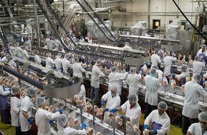 المملكة توقف استيراد الدجاج البرازيلي - صحيفة صدى الالكترونية