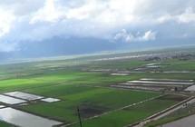 الأمطار تغمر نصف أراضي سهل الغاب في سوريا