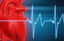 دراسة.. صحة قلبك في سلامة أمعائك!