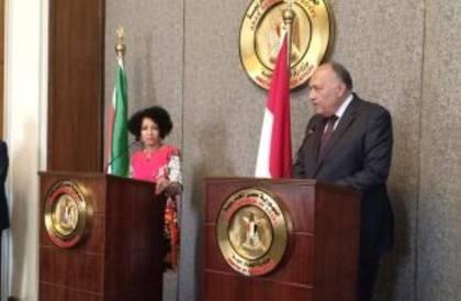 وزير الخارجية المصري: توافق عربي على ضرورة التوصل لحل نهائي للقضية الفلسطينية