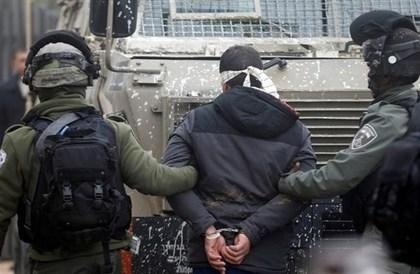 الاحتلال يعتقل 14 فلسطينياً