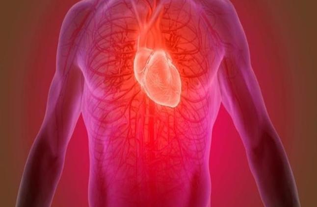 مكمل غذائي سحري.. يساعد في شفاء مرضى القلب والعقم