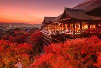 أفضل وأجمل طريقة لاستكشاف اليابان التقليدية
