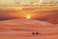 تشكل الصحاري نسبة %95 من مساحة السعودية