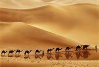 كما يوجد بها صحراء الربع الخالي التي تعد ثاني أكبر صحراء في العالم