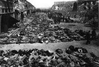 """وأجرى هتلر إبادة جماعية لليهود والمعاقين والمثليين ووصل عددهم إلى 11 مليون إنسان وهو ما عرف بالـ """"هولوكوست"""""""