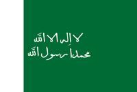 علم الدولة السعودية الثانية