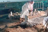 """الأمير """"عبدالرحمن"""" عند قبر والده بعد الأنتهاء من الدفن"""