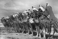 شدد الملك عبد العزيز على جنوده مراعاة حرمتها وقدسيتها ونجح الملك عبد العزيز في دخول مكة وضمها رسميًا إلى سُلطته دون وقوع أي قتال وإنما دخلوا جنوده إلى مكة المكرمة معتمرين بعد رحيل قوات الشريف حسين إلى جدة