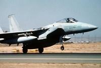 تمتلك السعودية ما يقارب الـ 240 مقاتلة من طراز F-15  التي تعد أحد أقوى المقاتلات الجوية في العالم