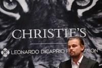 يعد ليوناردو من أشهر الناشطين في مجال حماية حقوق الحيوانات والبيئة وتبرع بملايين الدولارات لأجل ذلك كما شارك في عدة حملات لحماية النمور من الانقراض