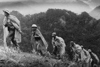 قرّرت الولايات المتحدة مُساعدة حكومة فيتنام الجنوبية لأنها كانت تَخشى امتداد النفوذ الشيوعي في العالم