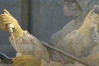 """خلال """"الحرب الباردة"""" استخدمت سلالات مختلفة من البكتيريا والفيروسات، مثل الطاعون والكوليرا لا تسبب جميعها الموت فمثلا فيروس (الأنفلونزا) يجعل الأشخاص يصابون بالحمى لمدة أسبوعين"""