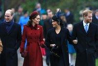 """لكنها اعتذرت بعد ذلك وأخذت على أفراد الأسرة الملكية """"تعتيمهم"""" عن الحقيقة بهدف تشويه صورتها"""