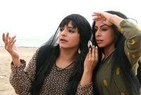 دخلت المجال الفني عام 2005، بعد أن قدمها الفنان جمال الردهان في مسلسل زينة الحياة وقيل إنه اكتشف موهبتها حين حضرت لإحدى البروفات المسرحية.