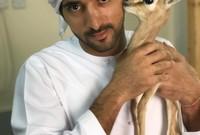 وهو أمير إمارة دبي منذ عام 2008 ورئيس مجلسها التنفيذي منذ عام 2009