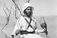 كما أسس الشيخ زايد صندوق أبو ظبي لتطوير الاقتصاد العربي