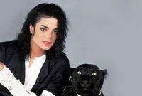 لم تخلُ حياة جاكسون الاتهامات والجدل والشائعات وكان من أبرزها اتهامه بالتحرش بالأطفال حينما وجهت له دعوى قضائية عام 2003