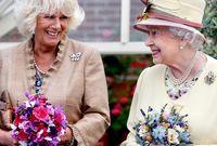 على الرغم من علاقتها التي امتدت لسنوات طويلة مع الأمير تشارلز، إلا أنها لم تقابل الملكة إليزابيث الثانية إلا في عام 2000 أي قبل 5 أعوام من زواجها من الأمير تشارلز