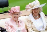 تقول تقارير عده إن الملكة إليزابيت الثانية لم تحبذ يوماً وجود كاميلا في حياة العائلة المالكة، فهي لم ترضخ لكل دعوات التنازل عن العرش لمصلحة ابنها الأمير تشارلز، لأنها ترفض كلياً أن تخلفها كاميلا