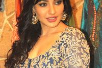 هي  ممثلة هندية وعارضة ازياء ومصممة