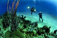 كما تعد أحد أشهر وجهات الغوص المفضلة في البحر الأحمر 